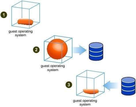 Cisco Virtual Networking : Novedades Cisco Nexus 1000V